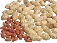 Groundnut Oil (Peanut Oil)