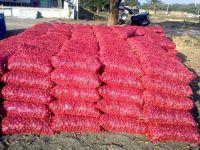 Fresh Onion Exporters