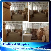 global logistics guangzhou best shipping agent to New York