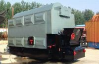 DZL type, Coal fired steam boiler