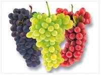 Fresh Grapes, Sultana