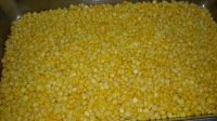 Frozen corn kernel