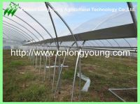 tunnel-connected greenhouse