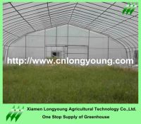 single tunnel greenhouse sale
