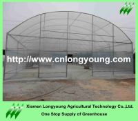 agriculture tunnel greenhouse sale