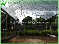 cheap agriculture greenhouse sale