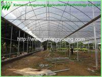 mutil-span greenhouse sale