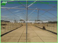 agriculture greenhouse sale