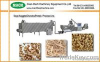 Isolated Protein/Texted Soya Protein/Soya Nugget machine