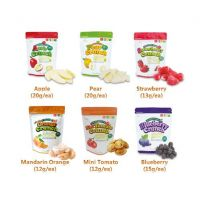 Natural Choice Freeze Dried Fruit Snack