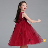 New Beauty Flower Gilrs Fashion Frock Lace Party Dress