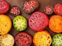 Heirloom Tomatoes  Award Winning