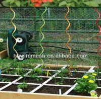 Tomato Spiral Plant Support
