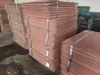 High purity Copper Cathode 99.99% pure cathode copper with low price