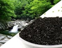 sell Bamboo activated carbon