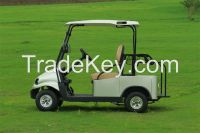 Falcon brand All Aluminum electric golf car with CE Certificate