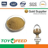 China supplier supply feed