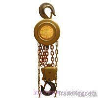 Explosion proof chain hoist