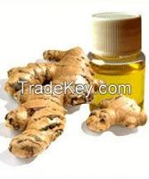 2014 Wholesale factory price for Pure Organic Ginger Oil from Turkey