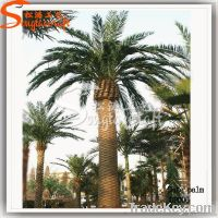 Top Grade Artificial Date Palm Tree, decoration palm tree for sale