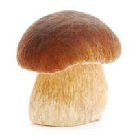 Frozen mushrooms (new crop)