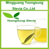 Natural Stevia Leaf Tea