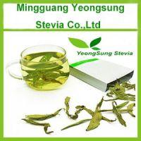 Natural Stevia Leaf Tea