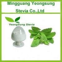 Pure Natural plant extract stevia powder