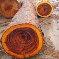 African Hardwood Logs
