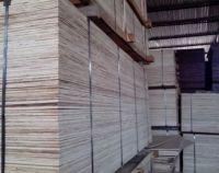 plywood: good quality