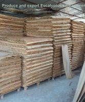 Vietnam Eucalyptus core veneer