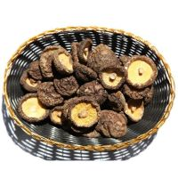 export dried shiitake mushrooms,dried brown and smooth mushrooms