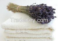 wholesale terry dobby white towel