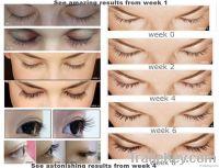 real+eyelash enhancer 2014 best lash grower