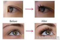 Manufatory Hot selling private label natural eyelash growth serum