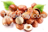 100% natural hazelnut/ hazelnut kernel for sale