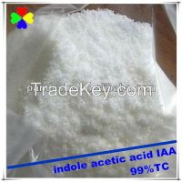 plant growth hormone 98%TC 3 indole butyric acid price