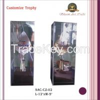Customize Trophy