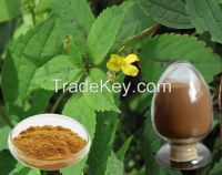 High quality organic silicon, beta sitosterol of  Nettle extract