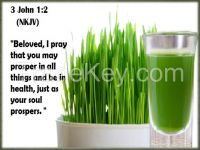 100% Pure Organic Barley Grass Concentration
