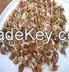 Moringa Seed & powder