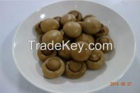 Yellow Preserved Mushroom in Brine Special for Korea