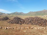 Iron Ore Magnetite