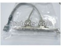 USB AF*2 to 10Pin Cable