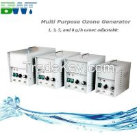 ozone water purification 1g/h  water treatment machine