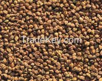 Chick Peas (Deshi Chana)