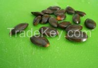 Graviola Seeds/Leaves/Capsules(Soursop Seeds)/Pure Astaxanthin Powder/Bitter Apricots Seeds Extract(Amygdalin)