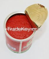 tomato paste 28-30% in can  800g