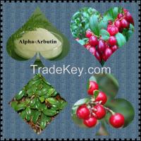 Lingonberry Extract,organic acids, vitamin C, provitamin A, B