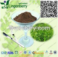 Nettle Root Extract 3,4-divanillyltetrahydrofuran